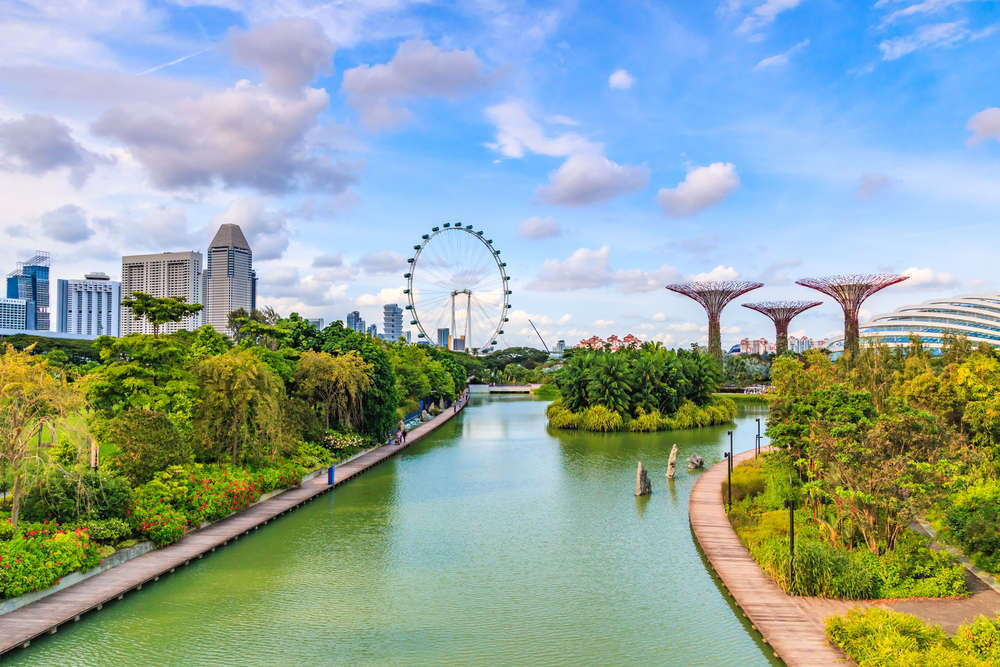 Supertrees at Gardens by the Bay, Singapore. The tree-like structures are fitted with environmental technologies that mimic the ecological function of trees. apiguide/Shutterstock